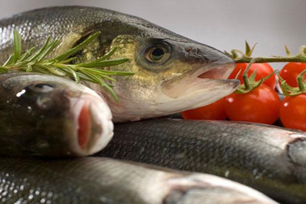 dieta-del-pesce