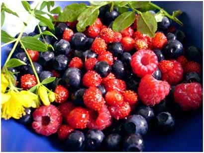 dieta-frutti-di-bosco