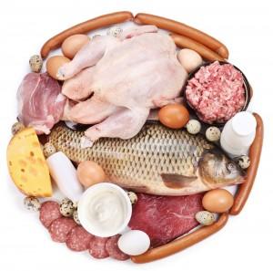 Dieta Proteica Palestra
