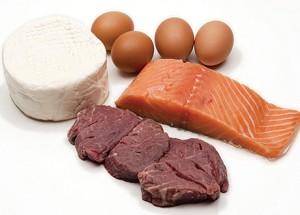 Sono necessarie o no le proteine?
