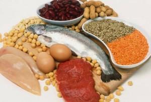 I cibi che possiamo mangiare durante una dieta proteica
