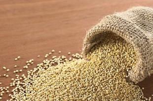 La quinoa, grande alimento