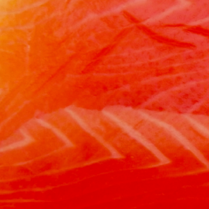 salmone affumicato dieta
