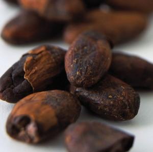 cacao ingrassare