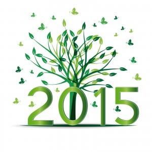 propositi nuovo anno