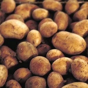 patate dieta