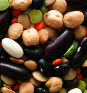 vegetali proteine