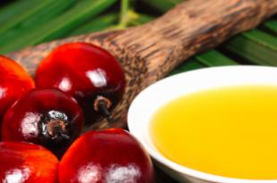 olio di palma dieta