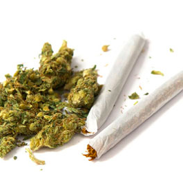 marijuana dieta