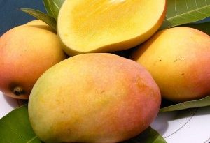 dieta del mango