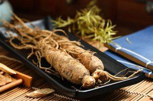 Il Ginseng nella dieta fa bene?