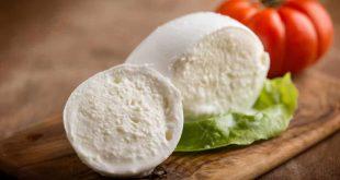 Mozzarella senza lattosio, è preferibile durante la dieta?