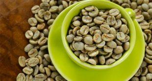 come utilizzare e per cosa è utile il caffè verde