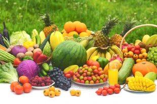La dieta del creatore