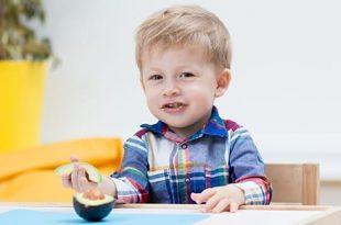 Fa bene ai bambini l'avocado?